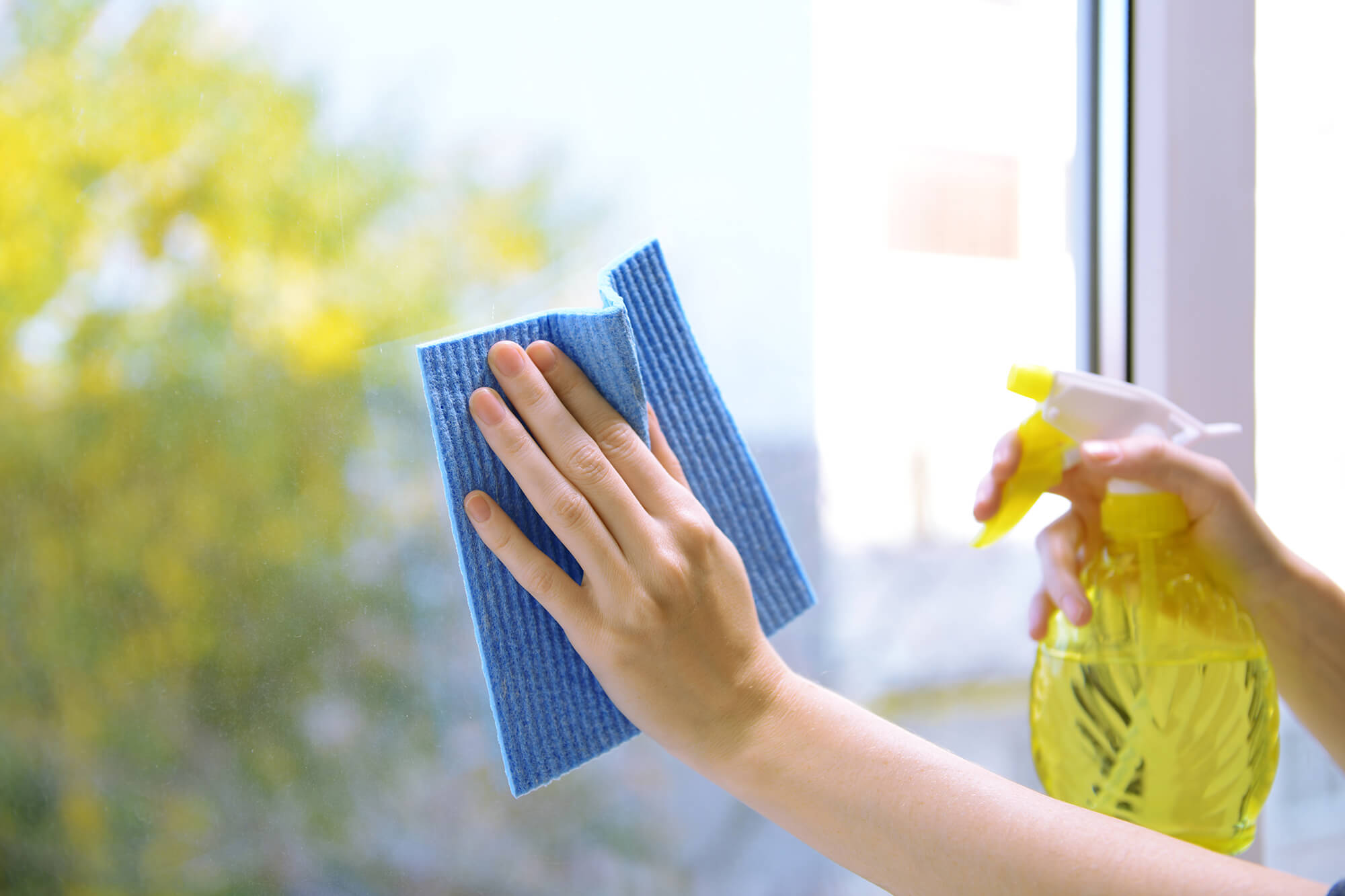 Expert Cleaning Tips for Tinted Windows at Home | Instant Windscreens